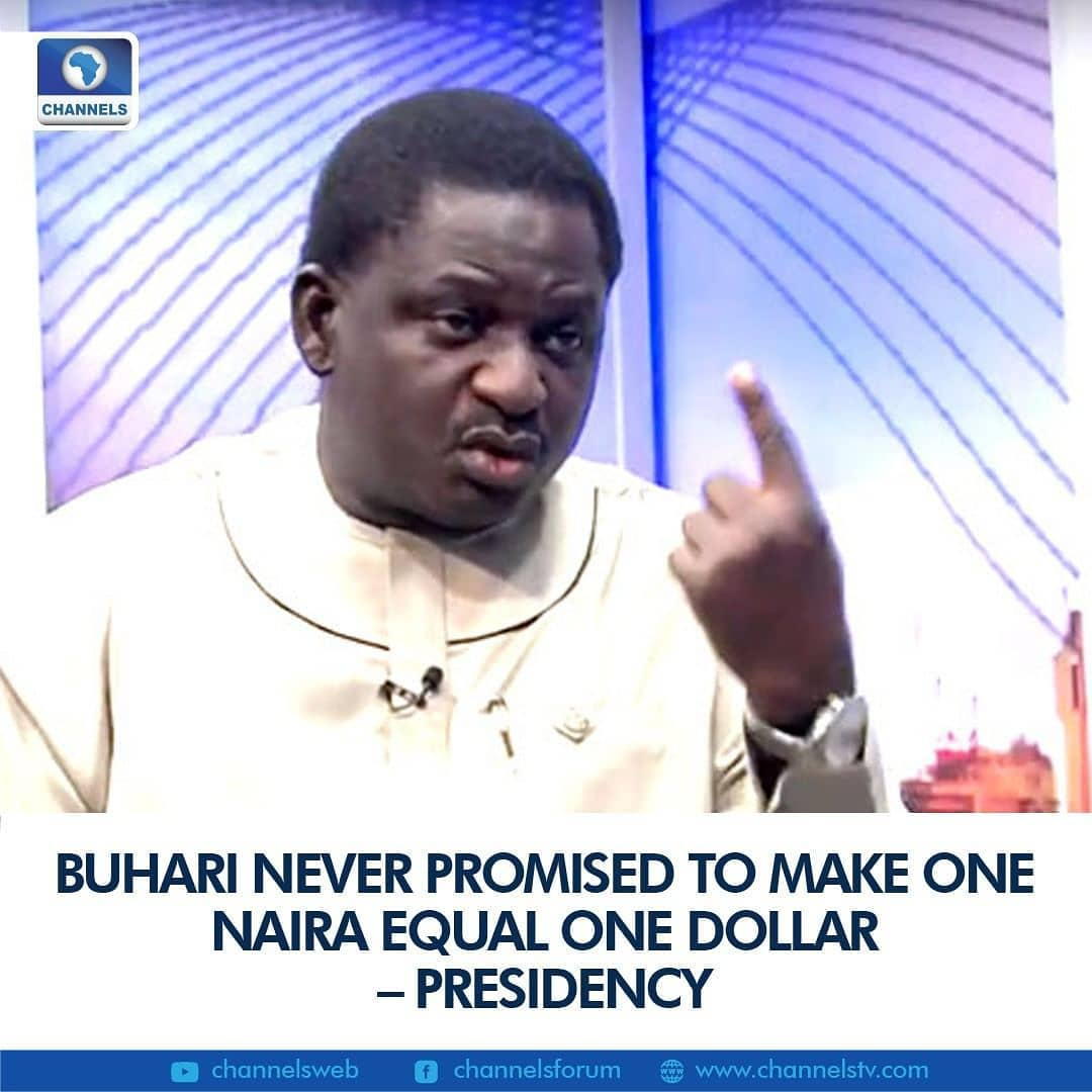"The Presidency has said that there was not a time when the current administration promised to make one naira become equivalent to one dollar.   Mr. Femi Adesina, Special Adviser to the President on Media and Publicity, said the claims suggesting that President Muhammadu Buhari made such a promise, are false.  ""It does not exist, it is fake, it is false, it is apocryphal, it doesn't"" Mr Adesina stated while appearing as a guest on Channels Television's Sunday Politics."